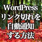 WordPress[Broken Link Checker] リンク切れを自動通知する方法